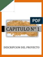 CARATULA CAPITULO 1
