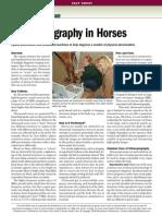 Ultrasonograph y