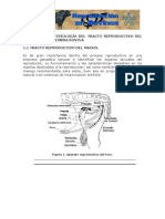 1.Anatomia y Fisiologia