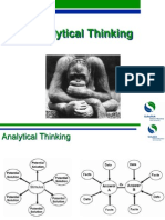 Analytic Thinkinging