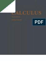 Michael Spivak Calculus(1994)