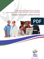 Risques CMR FPT FNP Juin2012