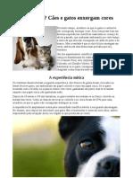 Curiosidade Ciêntifica.pdf