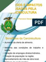 2 - BENEFÍCIOS  E IMPACTOS CAUSADOS PELA CARCINICULTURA
