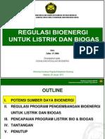 Regulasi Bioenergi Untuk Listrik