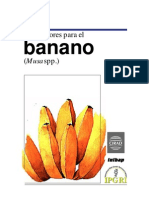 Descriptor de banano.pdf