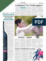Korea Herald 20080402