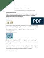Archivo de Cojinetes