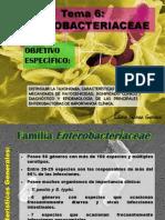 TEMA_6_Enterobacteriaceae_pre-grado.pdf
