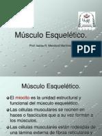 2.Músculo Esquelético.ppt
