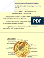 1 morfologia bacteriana [2]