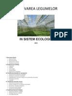1. Plan de Afaceri - Cultivarea Legumelor in Sistem Ecologic