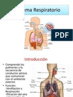RESPi.pdf