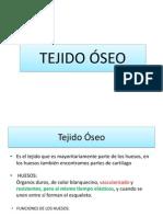 Tejido Oseo.pdf