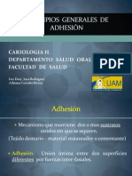 principiosgeneralesdeadhesion-111217204533-phpapp02.pdf