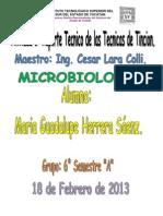 ACTIVDAD 3 - MICROBIOLOGIA