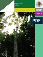 arboles-selva-lacandona.pdf