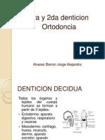 Tipos de Denticion