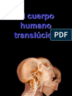 Cuerpohumano[1].Pps[1]