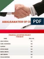 amalgamation ppt.pptx