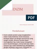 enzim-1