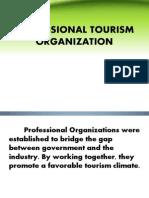 Professional Tourism Organization1 Final