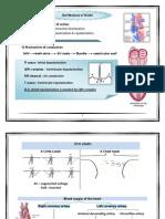 ECG-Dr.Allam  منقول(3).pdf