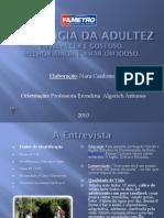 PDF-Slides- Idosos - Psicologia Da Adultez