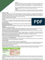 Programa Anual de Seguridad y Salud Ocupacional
