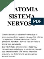 Sistema Nervoso Central - Completo