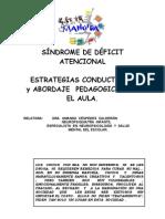 SDA_Amanda-Cespedes.pdf