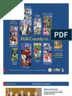 Polk County Annual Report 2008