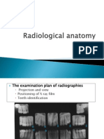 58281044-Anatomie-radiologica-1