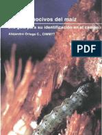 INSECTOS NOCIVOS EN EL MAIZ GUIA PARA IDENTIFICACIÓN EN CAMPO CIMMYT - copia.pdf
