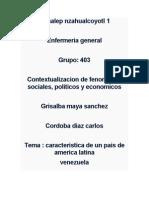 56753283 Caracteristicas de La Sociedad Venezolana (1)