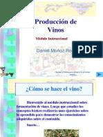 fermentacion-de-vinos-1200861008404086-3