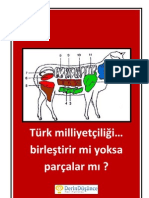 Turk Milliyetciligi