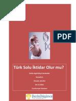 Turk Solu Iktidar Olur Mu