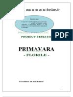primavara proiect tematic.doc