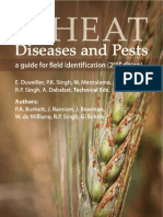 Wheat diseases and pests