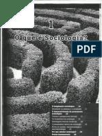 Sociologia 1º ano P1