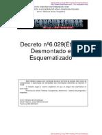 Decreto 6029 PDF