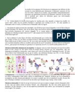 Guía de 2da Ley de Mendel y codominancia