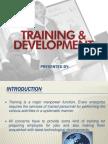 Training n Development
