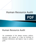 1. Human Resource Audit