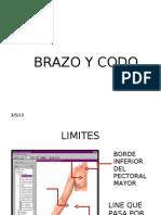 REP 3_Brazo & Codo