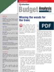 Netscribes Budget Analysis 2013