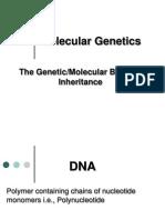 Molecular Genetics 1