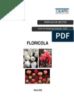 Perfil Flores 2008 CORPEI