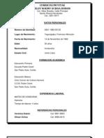 Curriculum Vitae Adelsy Noemi Ochoa